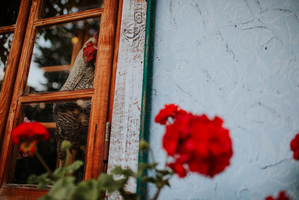 przygotowania panny młodej, folwark u różyca, klimatyczna sala weselna, zegrze