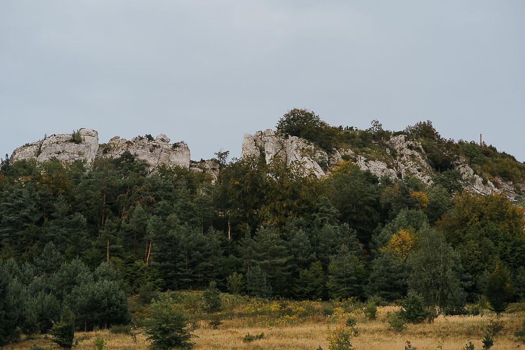 sesja ślubna, sesja poślubna, sesja w górach, sesja na jurze, Piotr czyżewski fotografia